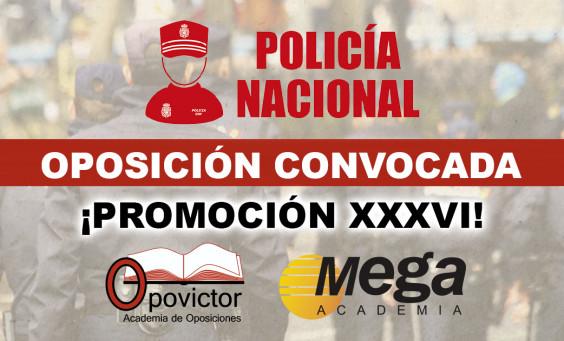 Convocatoria 2019 CNP